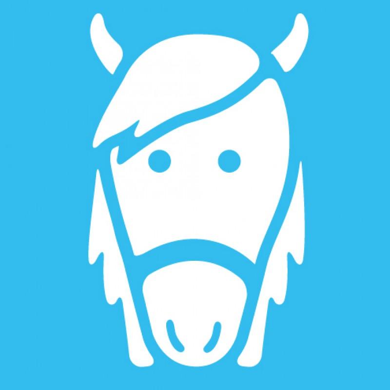 Paardensportartikelen