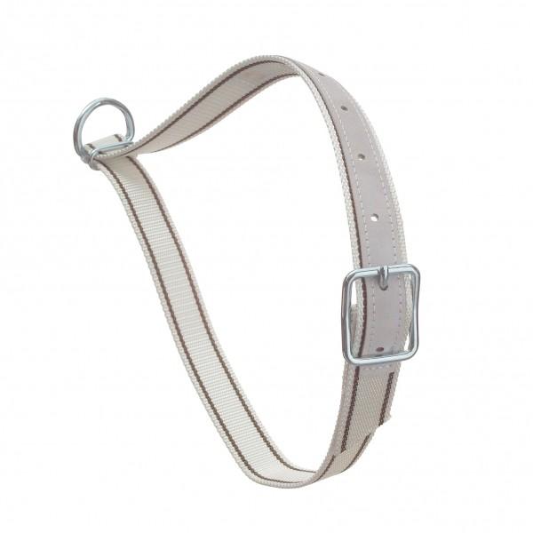 Nylon halsriem 130cm met D-ring, wit