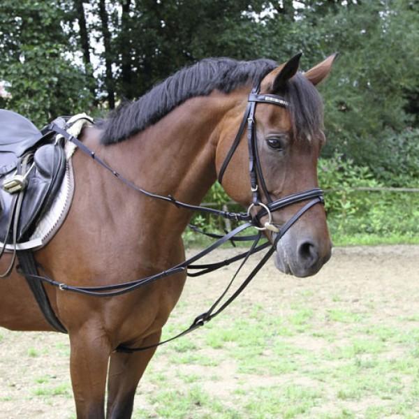 Driehoeksteugel Pony