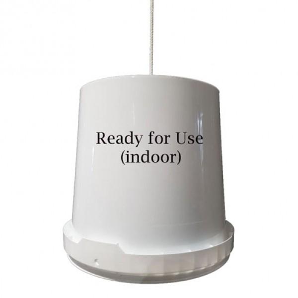 Emmer wit indoor 11 liter Sticky-Trap