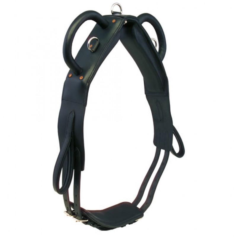 Voltigeersingel met voetlussen 145-195 / Pony