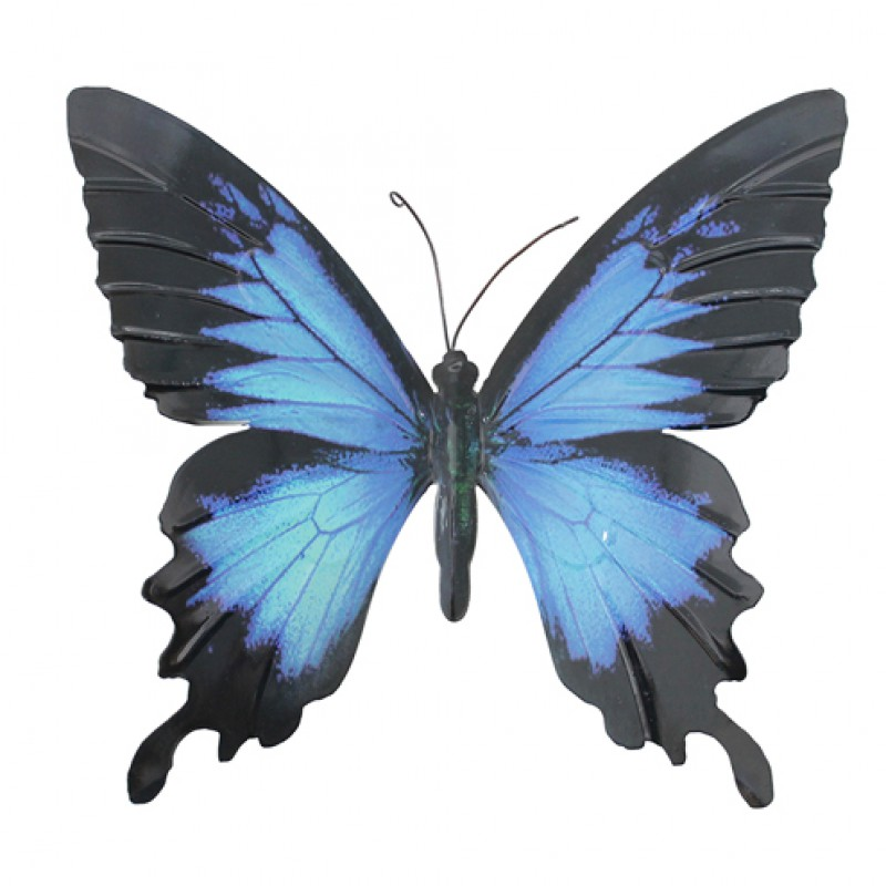 Large metal Butterfly Blue Black Primus