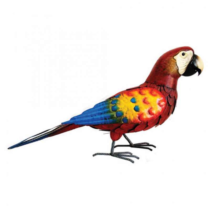Deluxe metal Red Parrot Primus