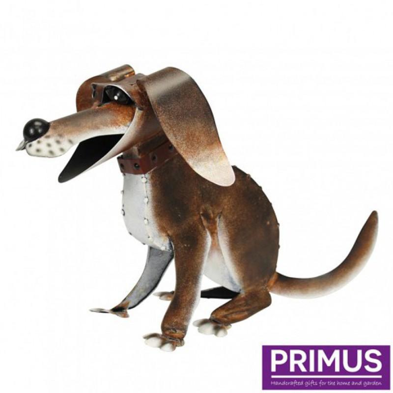 Reggie the dog PRIMUS