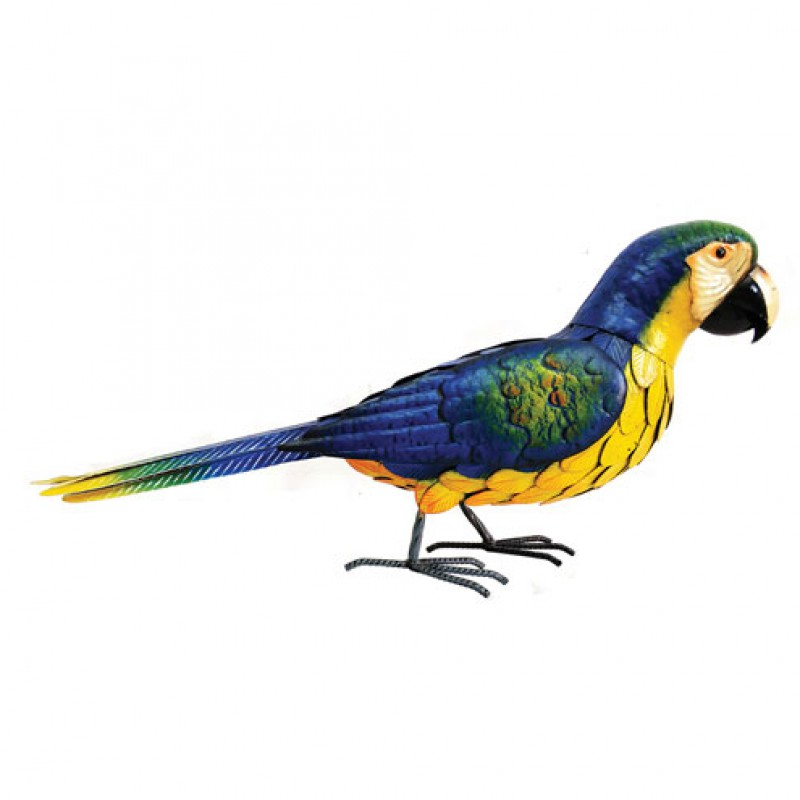 Deluxe metal Blue Parrot Primus