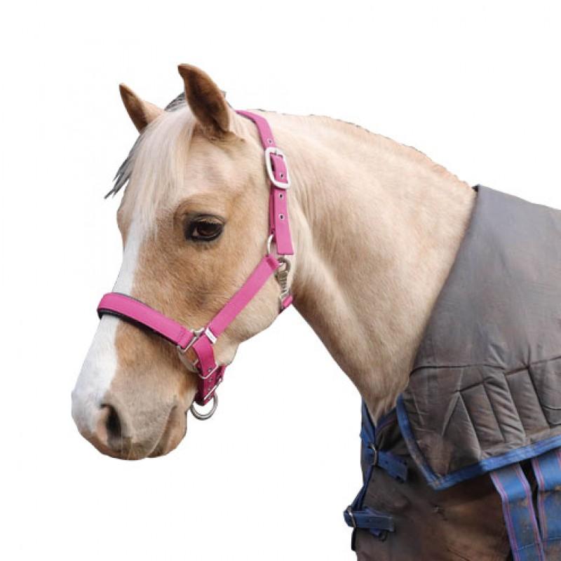 Halster 'Luxury' gevoerd Pony Perry