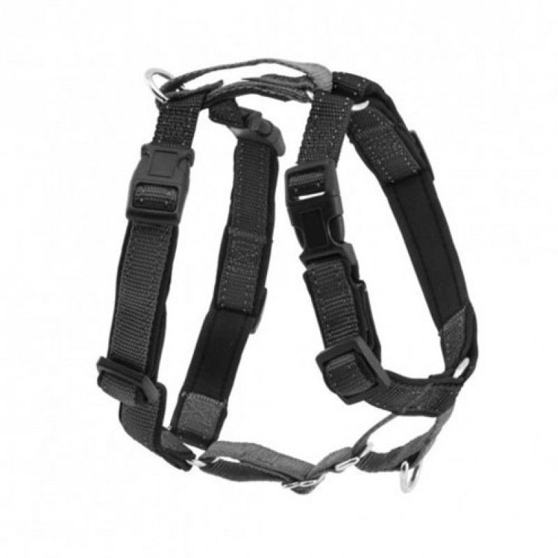 Petsafe 3IN1-M-BLK-19 Harness and Car Restraint 3-in-1 M, black