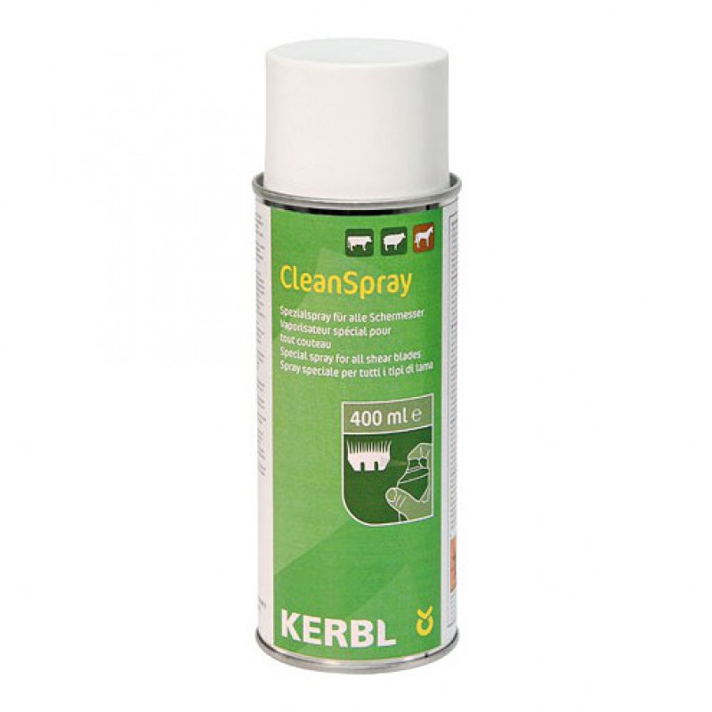 Constanta Cleanspray 400ml