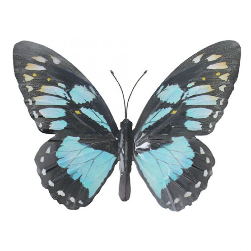 Large metal Butterfly Cyan Primus
