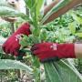 Handschoenen 'Soft N Care Landscape' rood – mt 9/L