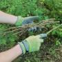 Handschoenen 'Secret Garden' mt 8/M