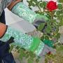 Handschoenen 'Rose Garden' mt 8/M